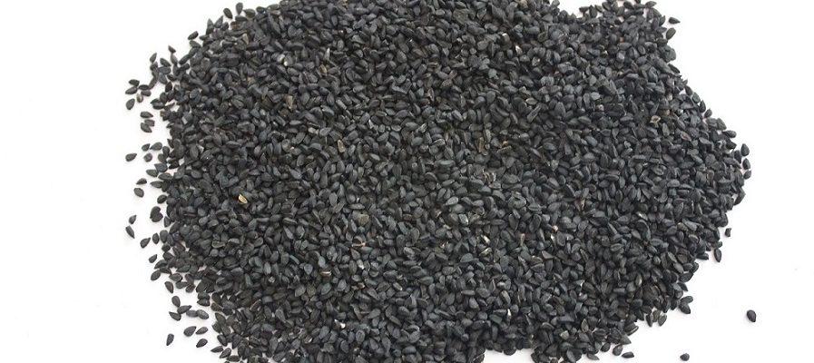 سیاهدانه-سیاه دانه